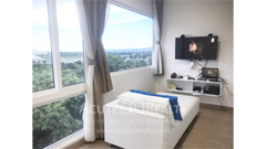 condominium-for-sale-hinoki-condo-chiangmai-chang-phuak-chiang-mai