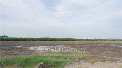 land-for-sale-bang-phli