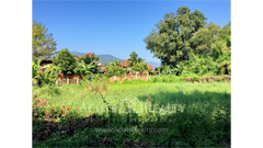 land-for-sale-canel-rd-suthep-muang-chiang-mai