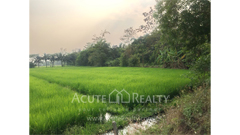land-for-sale-nong-han