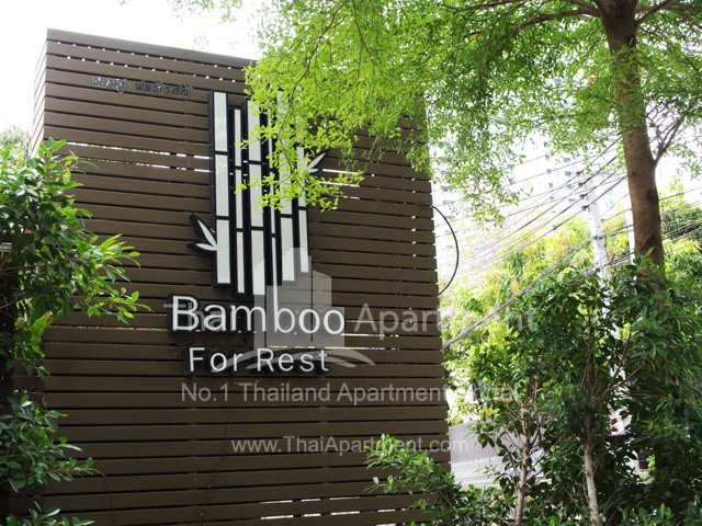 Bamboo For Rest image 1