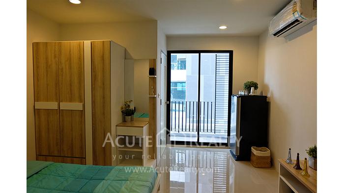 Patio Apartment image 3