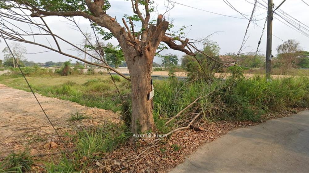 Land  for sale Nong Chom image2