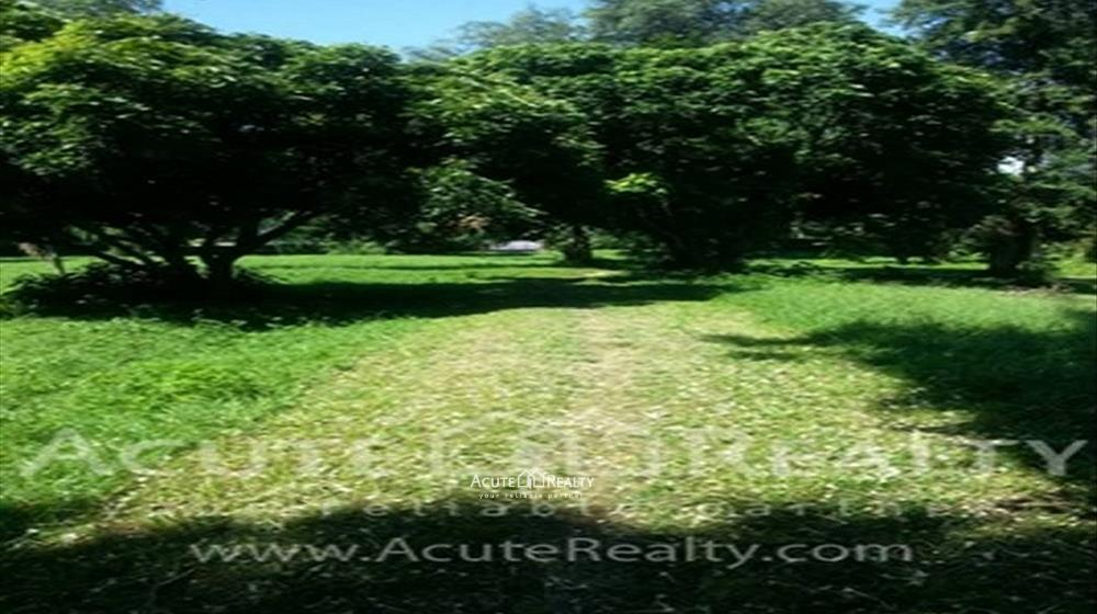 Land  for sale Paton image2