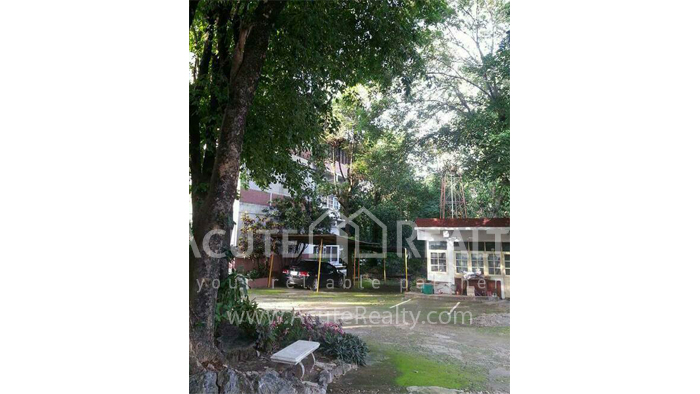 Office Building  for sale Chotana Rd., Chang Phueak image17