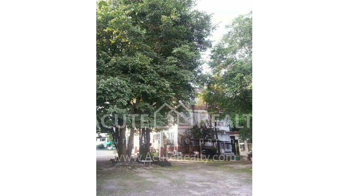 Office Building  for sale Chotana Rd., Chang Phueak image18