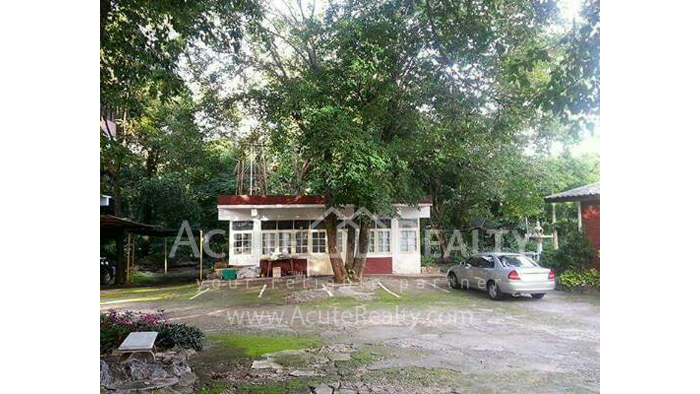 Office Building  for sale Chotana Rd., Chang Phueak image19