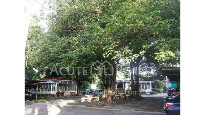 Office Building  for sale Chotana Rd., Chang Phueak image24