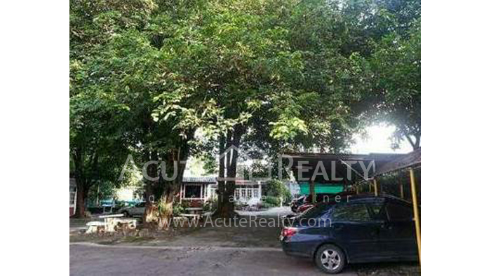 Office Building  for sale Chotana Rd., Chang Phueak image25