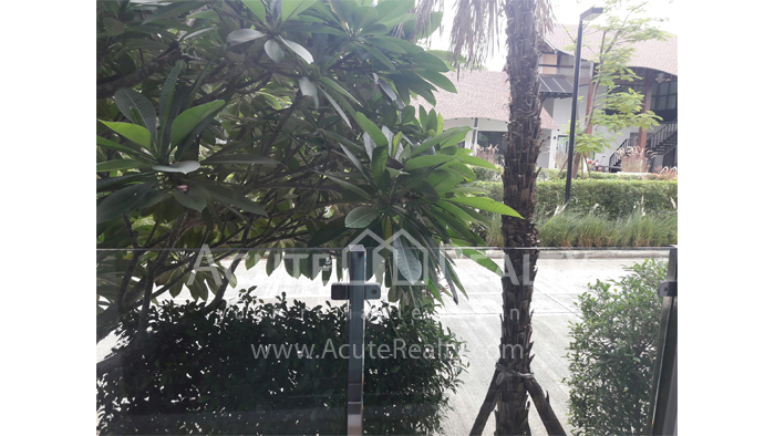 Condominium  for rent Himma Garden Condominium Chotana Road, Changpuak image10