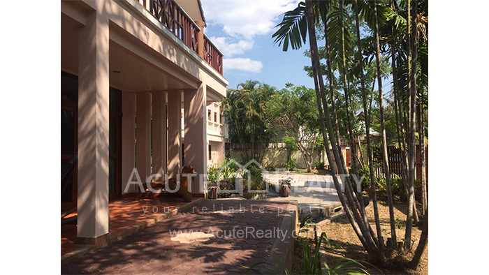 House  for sale & for rent Chet Yod Rd., Changpuak image14
