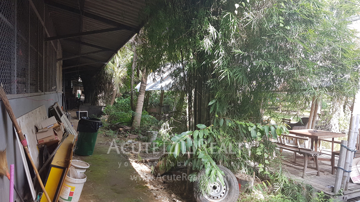 Factory  for sale Nong Chom image18