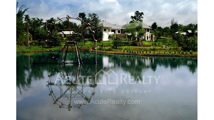 House  for sale & for rent Mae Rim - Samoeng Rd. image0