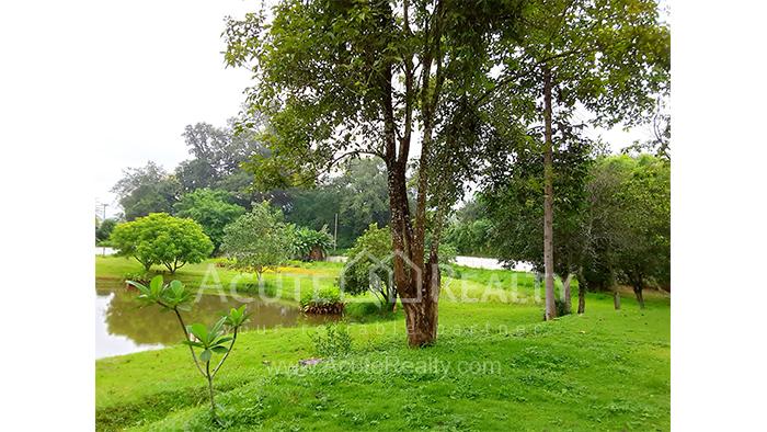 Land  for sale Mae Rim - Samoeng Rd. image0