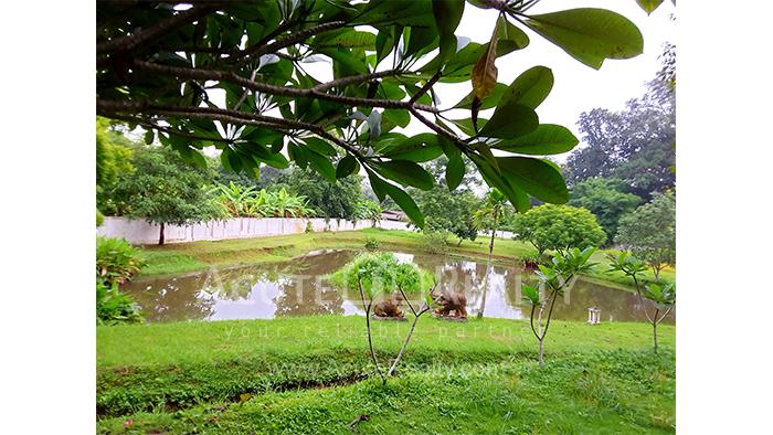 Land  for sale Mae Rim - Samoeng Rd. image1