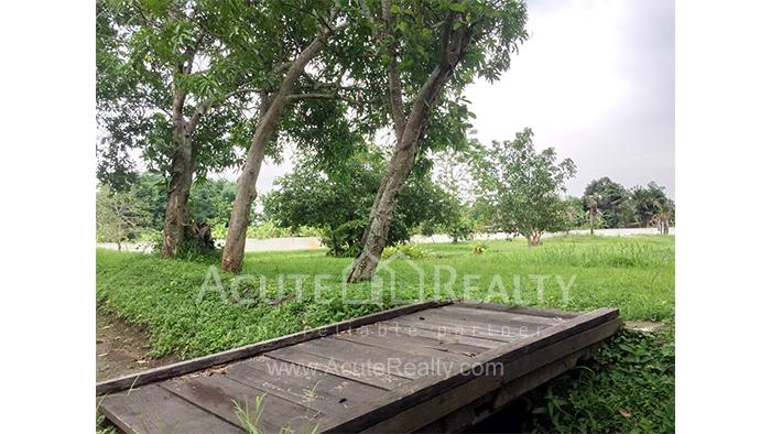Land  for sale Mae Rim - Samoeng Rd. image5
