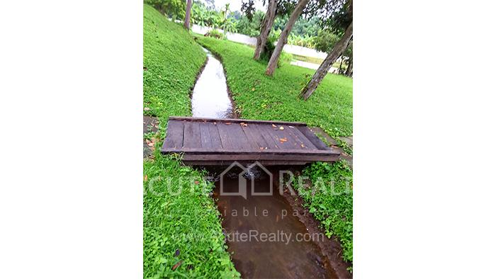 Land  for sale Mae Rim - Samoeng Rd. image8