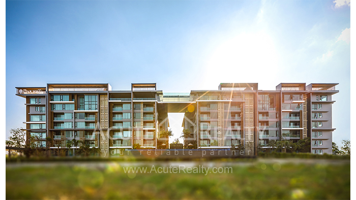 Condominium  for sale The Star Hill Muang, Chiang Mai image1