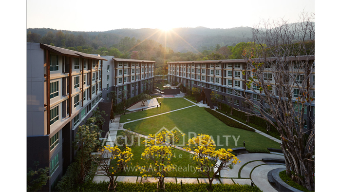 Condominium  for sale Dcondo Campus Resort Suthep image0