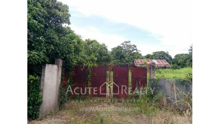 Land  for sale Thungsatok, Sanpatong, Chiang Mai image0