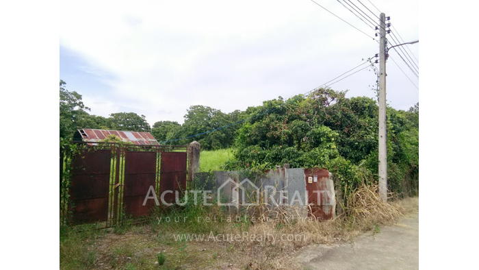 Land  for sale Thungsatok, Sanpatong, Chiang Mai image2