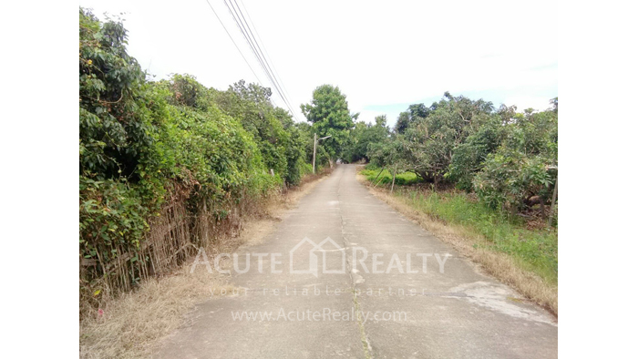 Land  for sale Thungsatok, Sanpatong, Chiang Mai image4