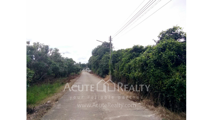 Land  for sale Thungsatok, Sanpatong, Chiang Mai image5