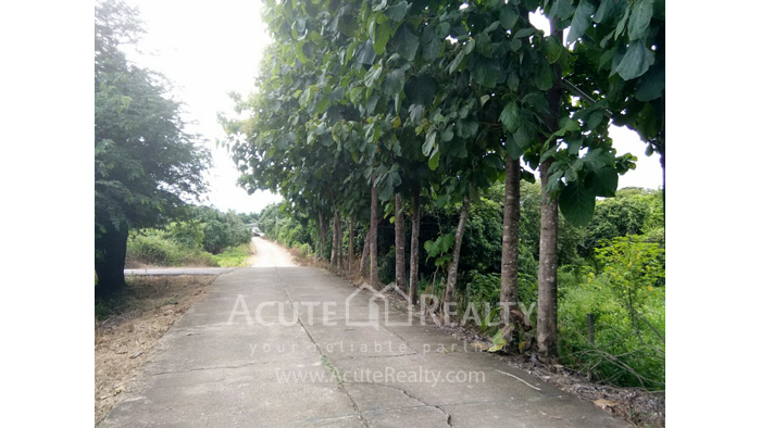 Land  for sale Thungsatok, Sanpatong, Chiang Mai image7