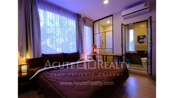 Condominium  for sale Tree Boutique @Nimman Suthep image1