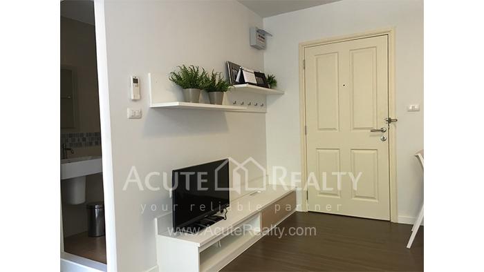Condominium  for rent Dcondo Campus Resort Suthep image0