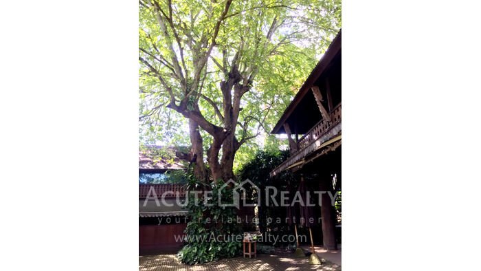 House  for sale Mae Ram, Mae Rim, Chiang Mai image34