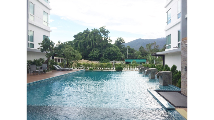 Condominium  for sale Hinoki Condo Chiangmai Chang Phueak image16