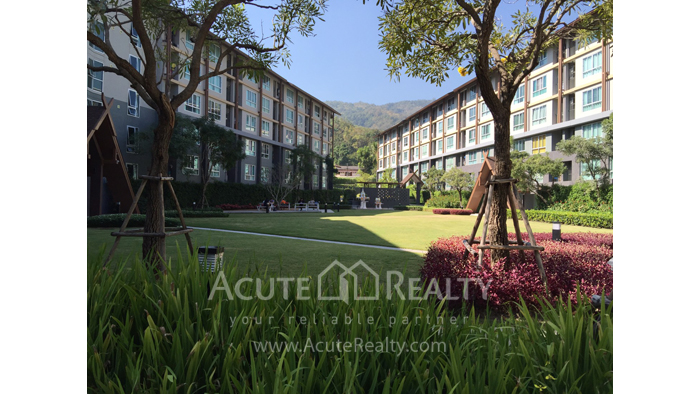 Condominium  for sale & for rent Dcondo Campus Resort Suthep image0