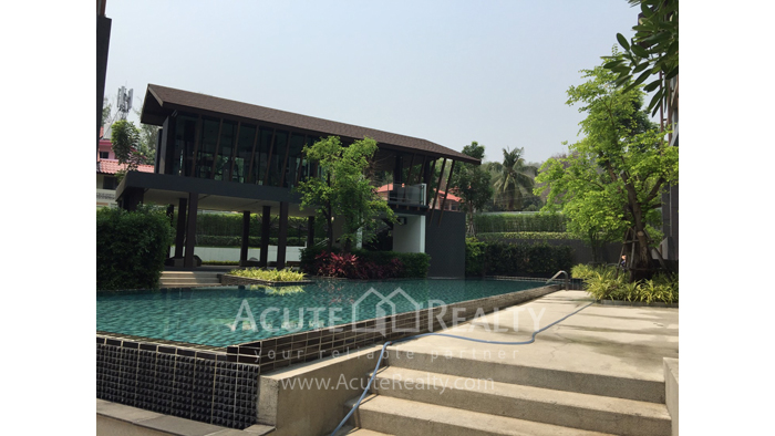 Condominium  for sale & for rent Dcondo Campus Resort Suthep image1