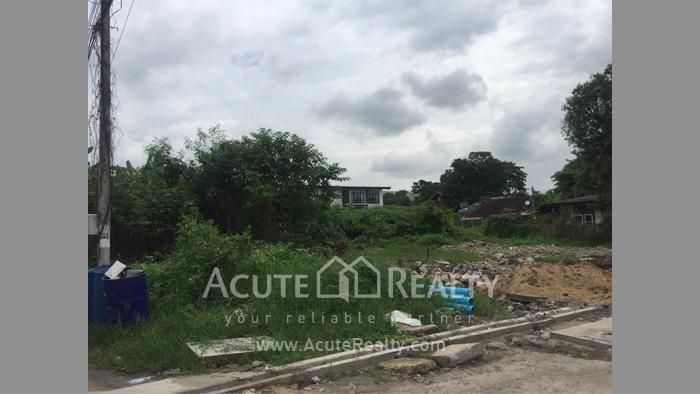Land  for sale Chotana Rd., Chang Phuek image4