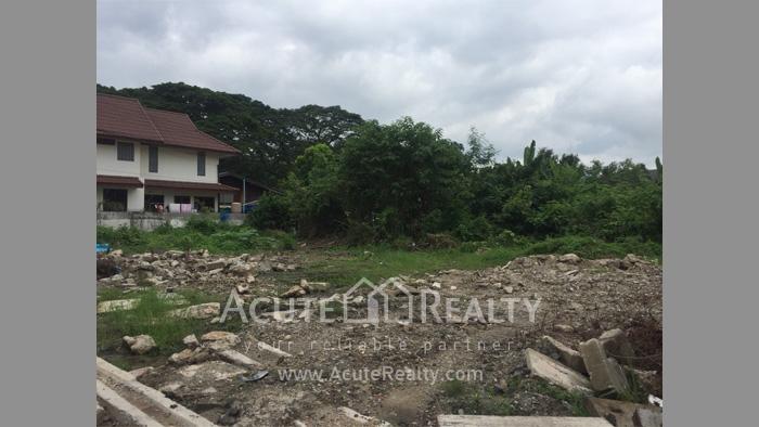 Land  for sale Chotana Rd., Chang Phuek image6