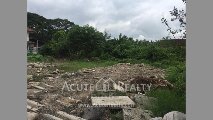Land  for sale Chotana Rd., Chang Phuek image9