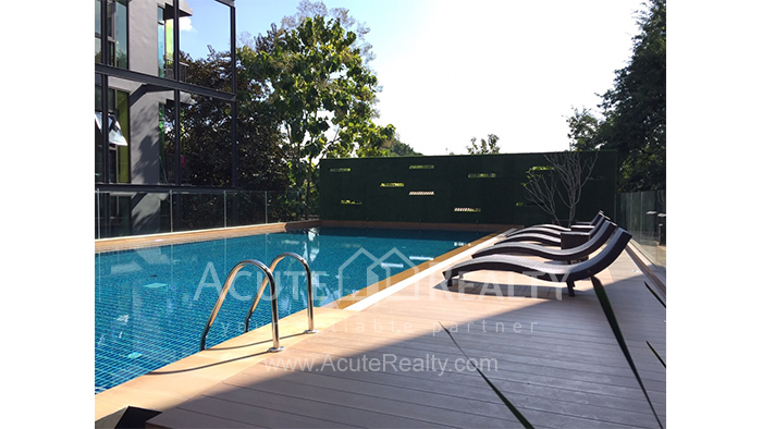 Condominium  for rent Stylish Chiang Mai Condominium Suthep image9
