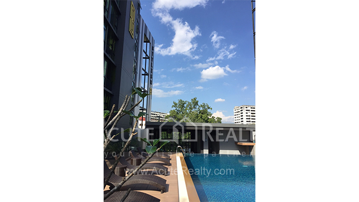 Condominium  for rent Stylish Chiang Mai Condominium Suthep image11