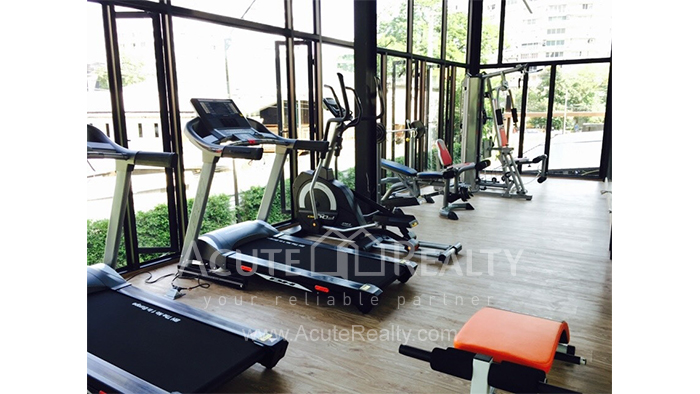 Condominium  for rent Stylish Chiang Mai Condominium Suthep image15