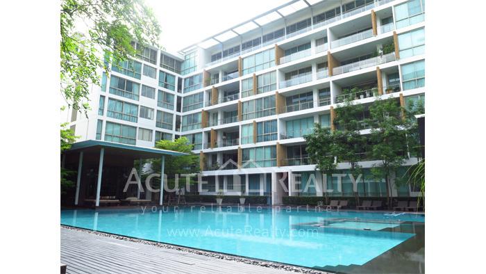 Condominium  for rent Ficus Lane Sukhumvit image15