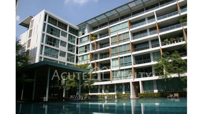 Condominium  for rent Ficus Lane Sukhumvit image17