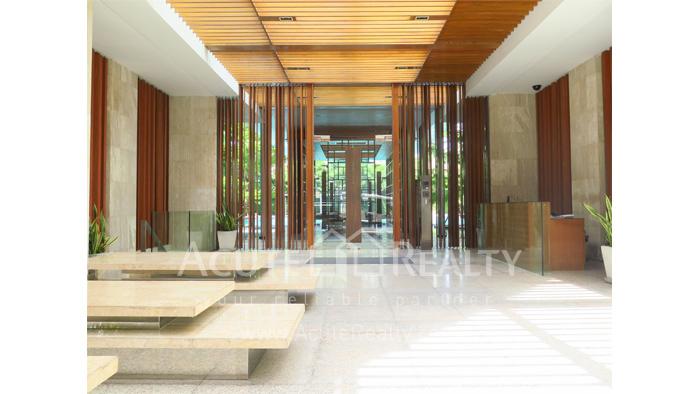 Condominium  for rent Ficus Lane Sukhumvit image19