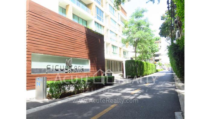 Condominium  for rent Ficus Lane Sukhumvit image20
