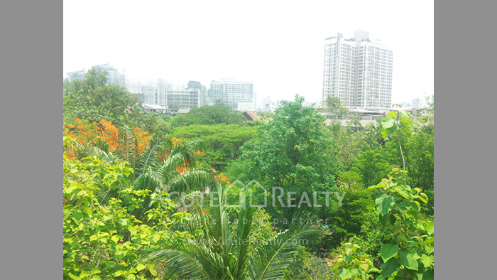 Condominium  for sale & for rent Ficus Lane Prakanong image4