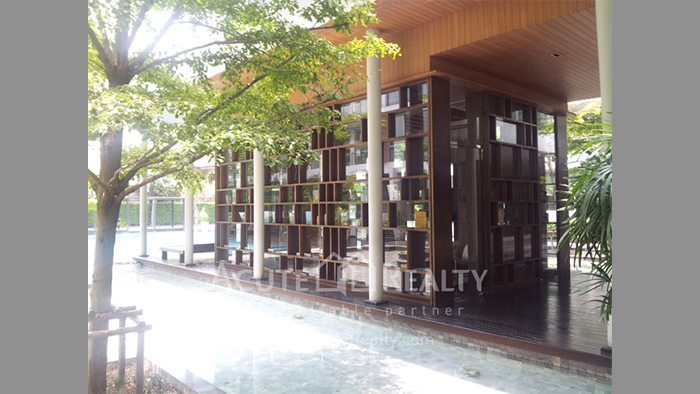 Condominium  for sale & for rent Ficus Lane Prakanong image7