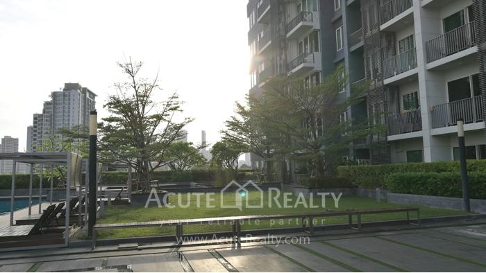 Condominium  for rent Siri at Sukhumvit Sukhumvit image13