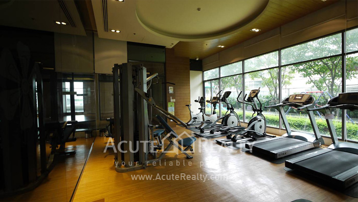 Condominium  for rent Bright Sukhumvit 24 Sukhumvit 24 image16