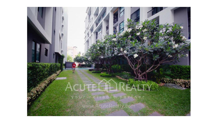 Condominium  for sale & for rent Metro Sky Ratchada Ratchadapisek - Huay Kwang image16