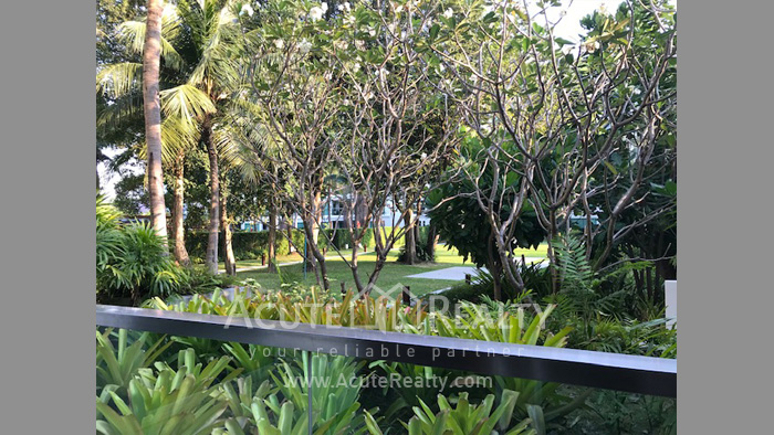 Condominium  for sale & for rent Amari Residences Hua Hin Hua Hin image3